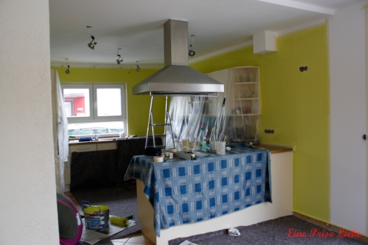 Küche - Renovierung (6)