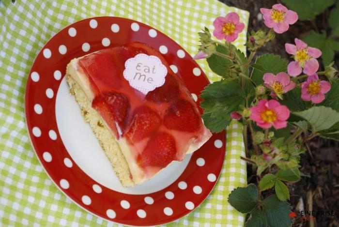 Erdbeer-Pudding-Schnitten(1)